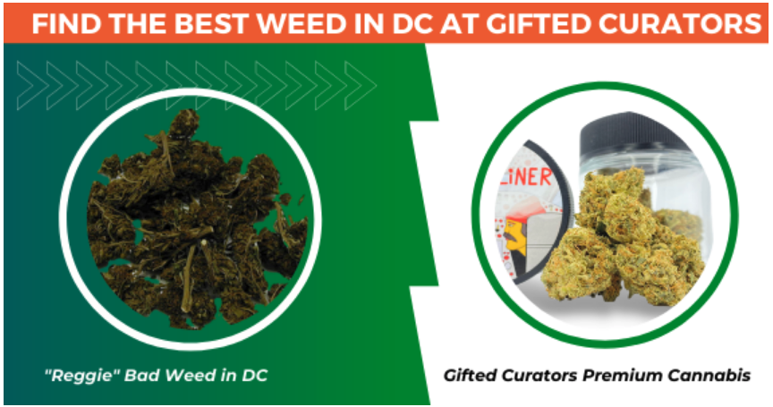 Find the Best Weed in DC at Gifted Curators